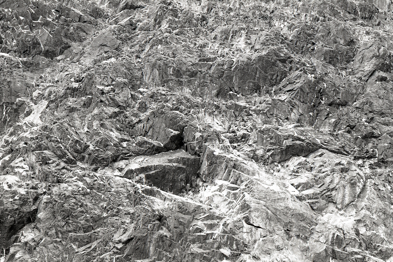 March_of_Film_2016_Texture.jpg